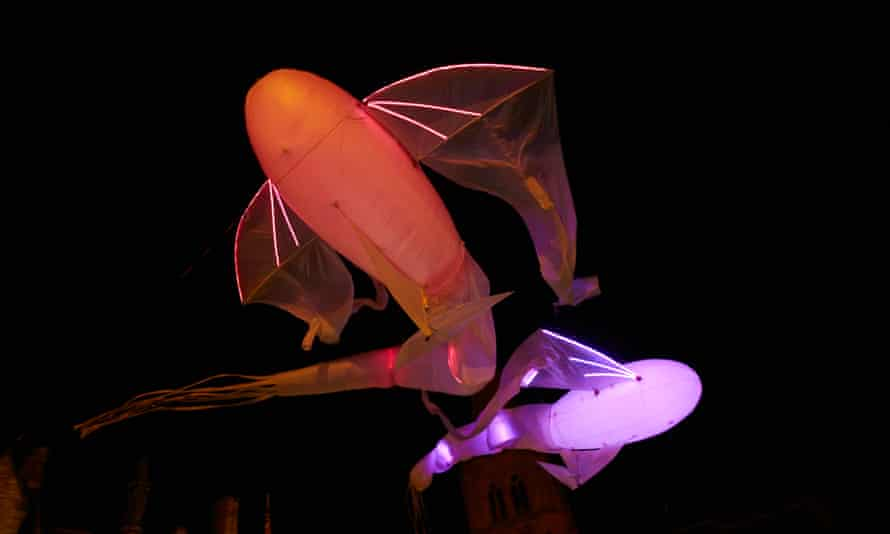 Installation artwork, of fish-like creatures, that was part of Lumiere Durham.