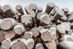 Stack of timber under snow with rings showing.