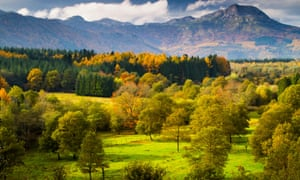 Forest and meadows landscape in autumn in Spain's Basque Country