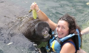 <strong>Get close to nature</strong><br><em>Kelly Pritchard</em><br><br>After surviving cancer, I make sure I do things that I enjoy, which includes seeing wildlife close up. It was fantastic to get close to manatees in Mexico, as well as seeing them in the wild<br>