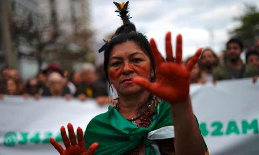 An activis at a protest against the destruction of the Amazon rainforest, in Rio de Janeiro this week.