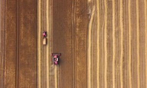 Fine dry weather brings out harvesters, Melrose, Scotland, UK - 25 Aug 2021. Photo by Rob Gray/Rex/Shutterstock