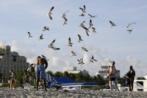 People feed gulls during the spring break holiday in Miami Beach, US
