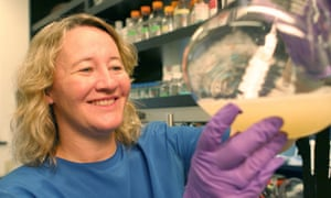 Carol Greider, who won a 2009 Nobel Prize for her pioneering research into the structure of chromosome ends, known as telomeres, is one of the signatories of this week's open letter to president-elect Trump.
