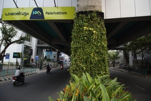 Plants are seen on the pillars of Palarivattom metro station in Kochi, Kerala