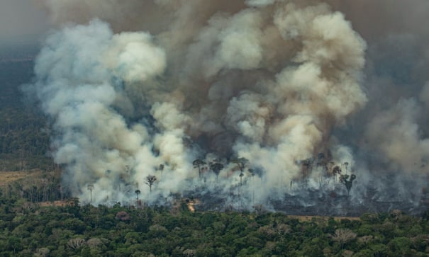 Aerial picture released by Greenpeace showing smoke billowing from a forest fire in the Amazon basin in northwestern Brazil, August 24, 2019.