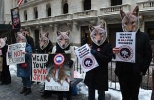 Peta members protest the coyote fur trade.