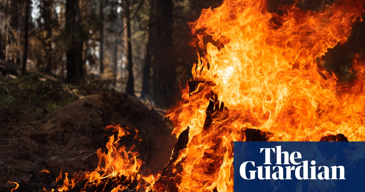 Weaker winds offer some respite to firefighters battling Oregon wildfire