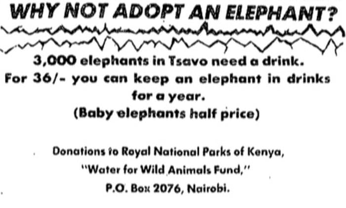 Campaign to save Kenya's wild animals – archive, 19 July