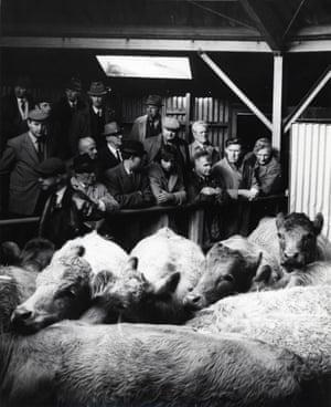 Cattle Market, Haywards Heath, Sussex, 1970s
