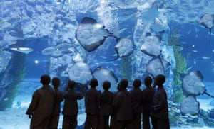 Seoul, South Korea Shaven-headed children look at rays at the Lotte World Aquarium. Ten children chose to experience a monk's life for two weeks as a part of program to celebrate Buddha's upcoming 2,560th birthday on 14 May