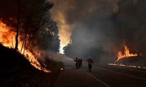 Firefighters battle flames during a forest fire near Aveiro in Portugal.