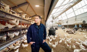 Ruud Zanders surrounded by some of his 24,000 hens.