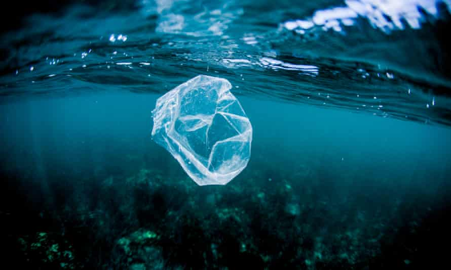 A plastic bag floats in waters off the coast of Costa Rica