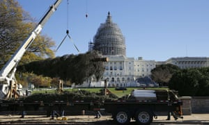 The US Capitol Christmas tree is unloaded in Washington DC on Friday