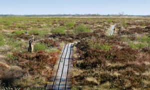 Lille Vildmose in Jutland is a world heritage site and the largest raised bog in northern Europe.