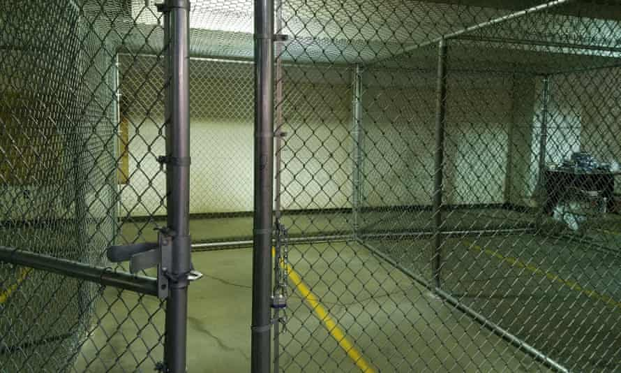 Jailed protesters say they were temporarily kept in cages that felt like 'dog kennels', but officials say the allegations of poor treatment are untrue.