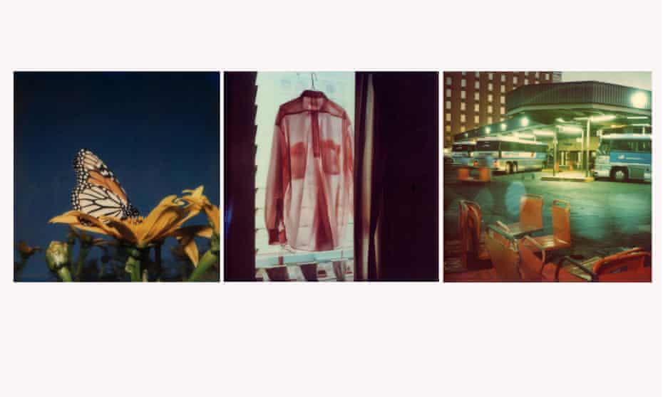 Butterfly, La Palma, November 1986; Kensington Motel, 1985; Austin Texas, 1979.