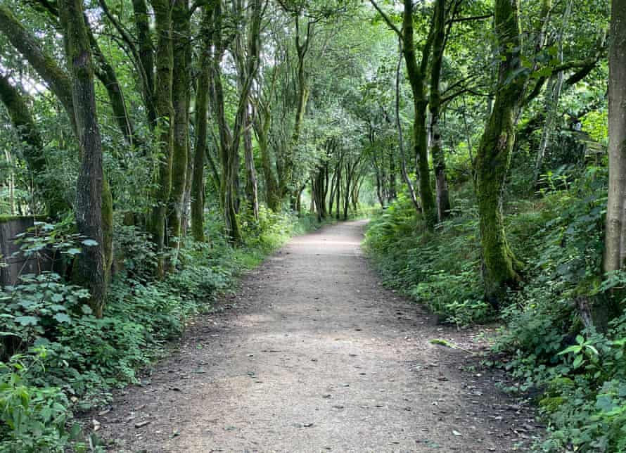 The Delph Donkey, a flat, tree-lined pathway