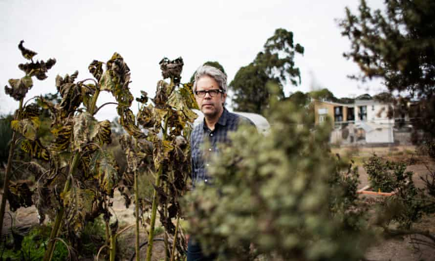 Jonathan Franzen: 'never forgets that the novel is a comic form'