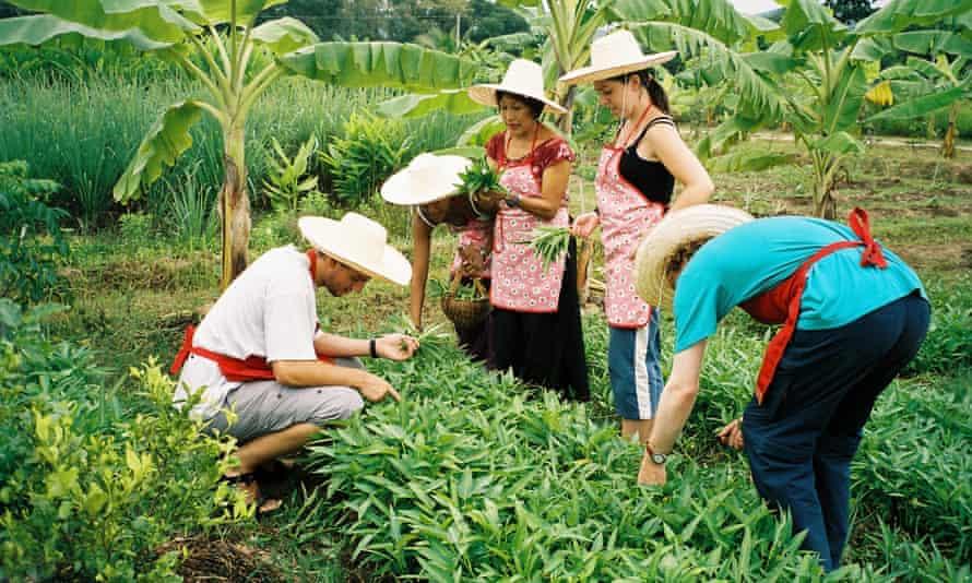 The Chiang Mai Thai Farm Cooking School.
