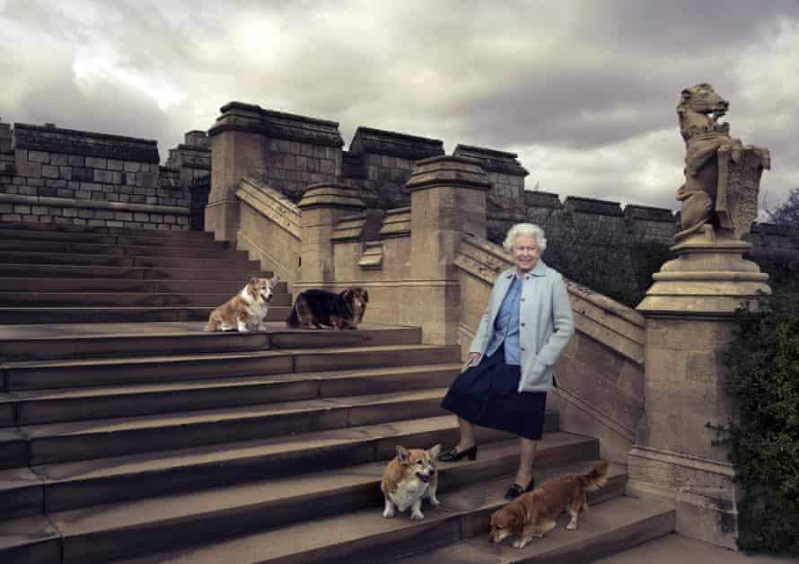 Queen and her dogs