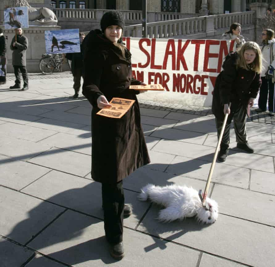 Making their point: members of Action Against Seal Hunting protest in Oslo, calling for a total ban.