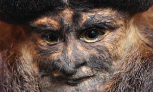 The face of a Waterton monkey head (c1820). Photograph: Roddy Paine Photography