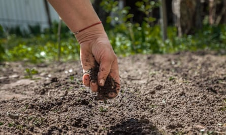 """""""To allow people to essentially become part of the soil quickly that will turn into a tree or something, I just think there's a lovely poetry about that,"""" said Senator Jamie Pederson, who introduced the bill that would legalize human composting in Washington."""