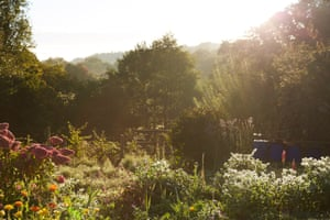 On the 16 acres of land at Fern Verrow, five acres are cultivated for the production of a wide range of English garden vegetables, fruit and flowers.
