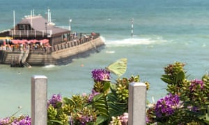 Butterfly by the sea at Broadstairs, Kent.