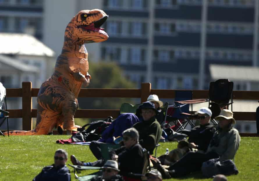 The crowd is unmoved by a person wearing a dinosaur suit during a cricket match in New Zealand.