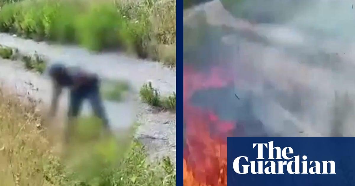 ビデオは、放火犯が南イタリアの草に火をつける瞬間を捉えています–ビデオ