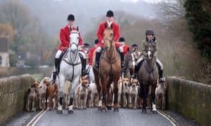 The hunting season is gearing up towards its Boxing Day ceremonial climax