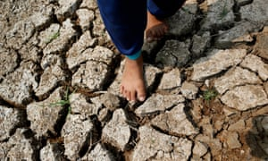 Drought-hit land in Thailand.