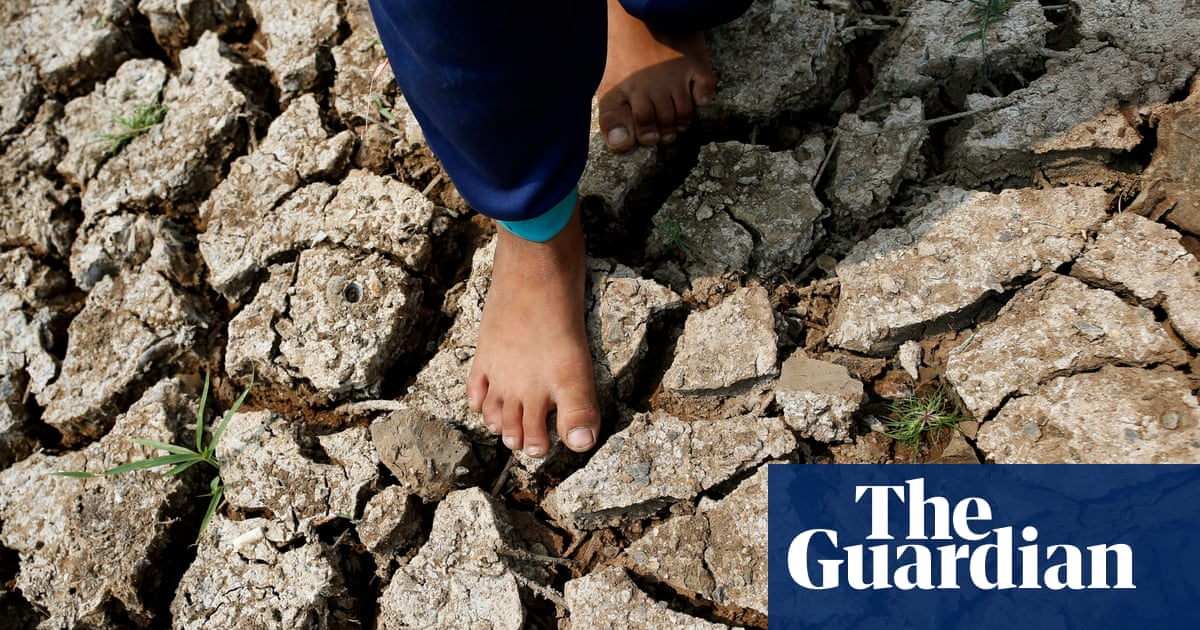 Climate shocks an 'early warning call' to act on rising hunger, UN says