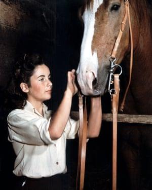 Elizabeth Taylor in the 1944 film adaptation of National Velvet.
