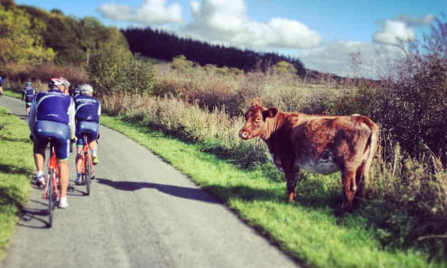 Cyclists can ride on a 15-square mile network of little-used roads that criss-cross pristine hills in South Carrick, near Ayr, known as 'Ayrshire Alps', in Scotland.