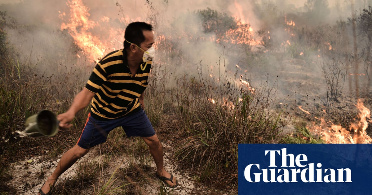 Indonesia's forest fires: everything you need to know | Guardian