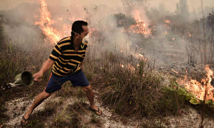 A villager tries to extinguish a peatland fire