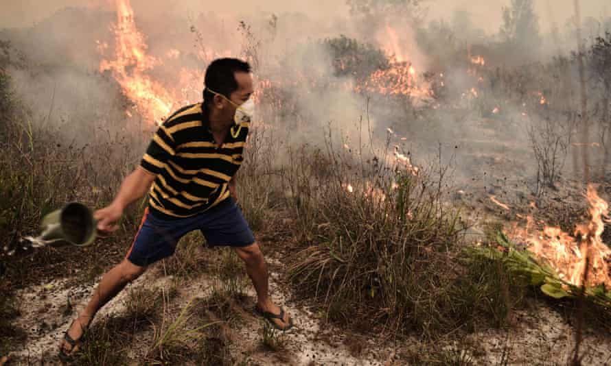 Up in smoke: A villager tries to extinguish a peatland fire on the outskirts of Palangkaraya city, Central Kalimantan on 26 October 2015.