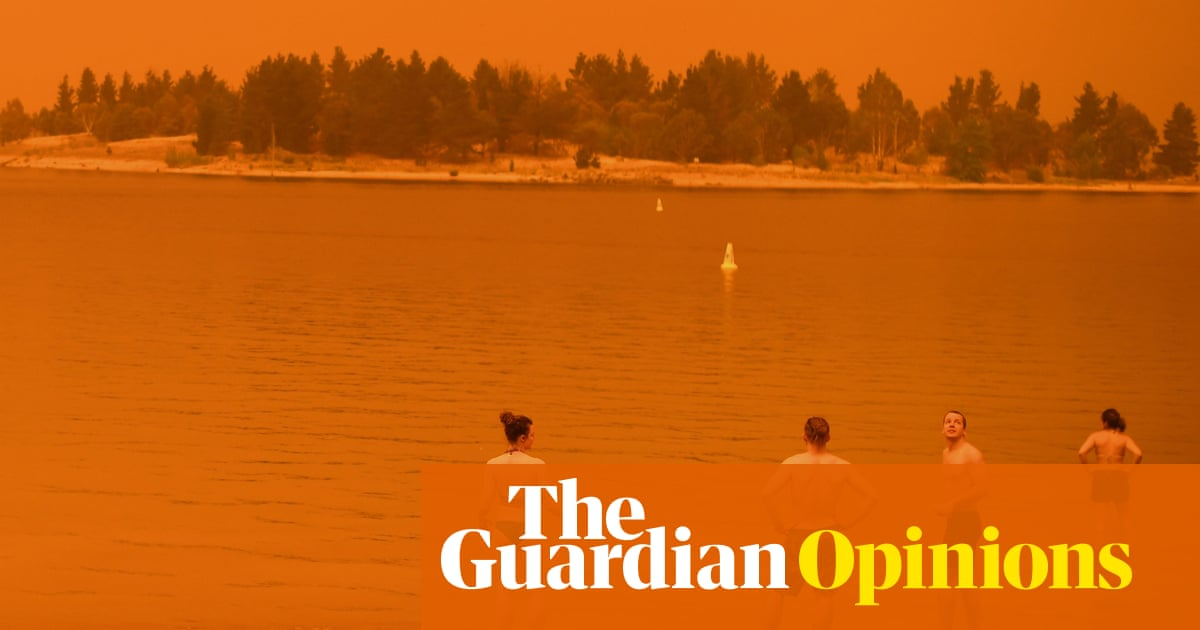 Fire raining on beaches, red skies and a billion animals killed: a different Australian summer | Brigid Delaney | Opinion | The Guardian