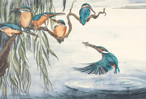 Kingfisher (1)-3 Illustration from the book The Lost Words