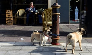 Dogs at a cafe in the city centre of Cardiff.