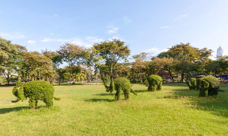 Topiary elephants in Lumphini park, Bangkok,