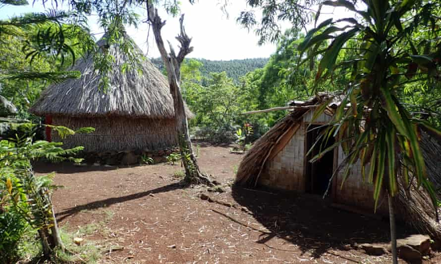 Traditional house construction on the island of Aneityum.
