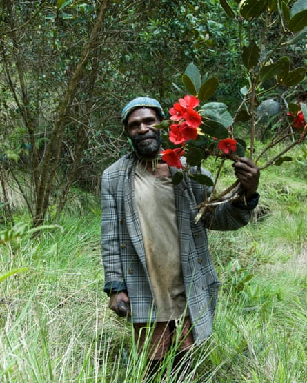 A local guide with a rhododendron in bloom in the Cromwell mountains of Papua New Guinea.