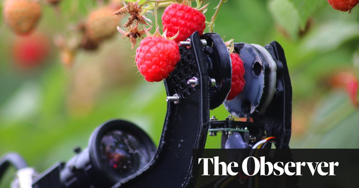 The Five: Robot Farmers