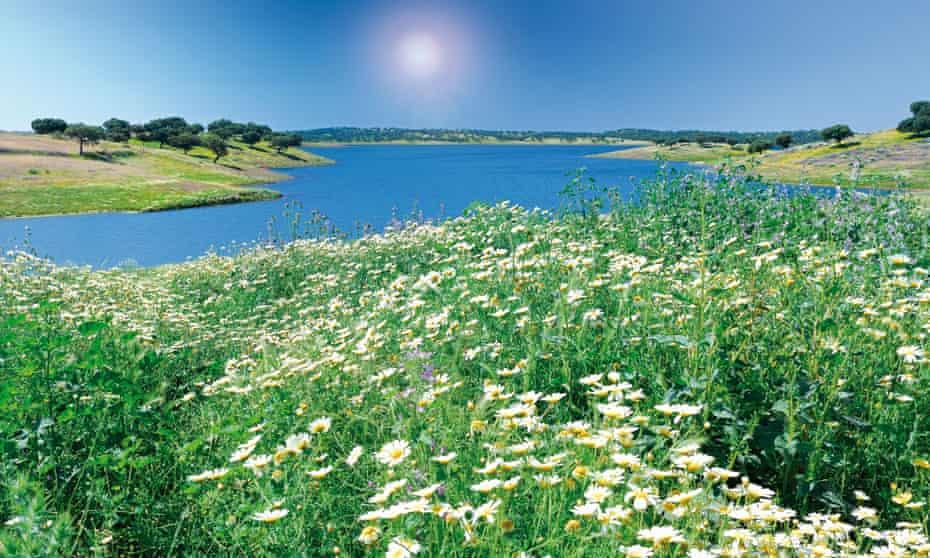 Portugal, Alentejo: Barrage of Alqueva in springtime.