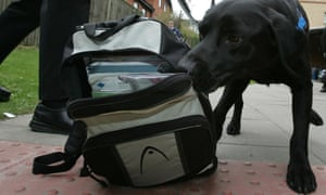 A police dog sniffs a school bag in High Wycombe.